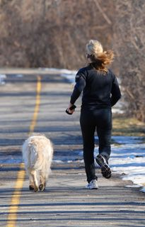 9087826-866x554_jogging in snow with dog