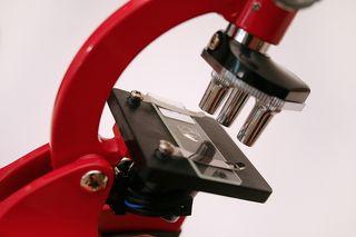Bigstock_Microscope_796027