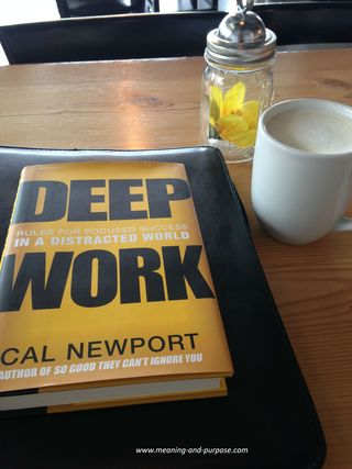 Deep Work book Newport